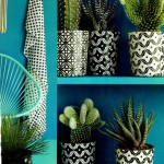 Tendencias decorativas: Cactus Love