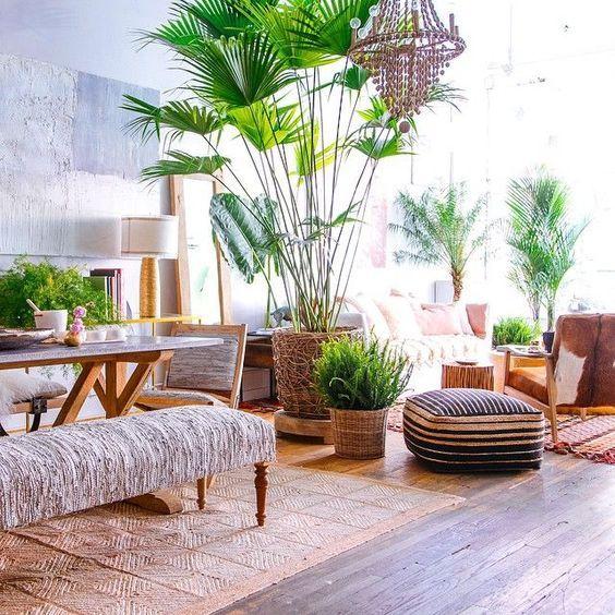 estilo-tropical-3