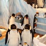 Dormitorio infantil temático: Pingüinos