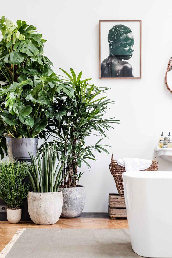 tropical baths 10