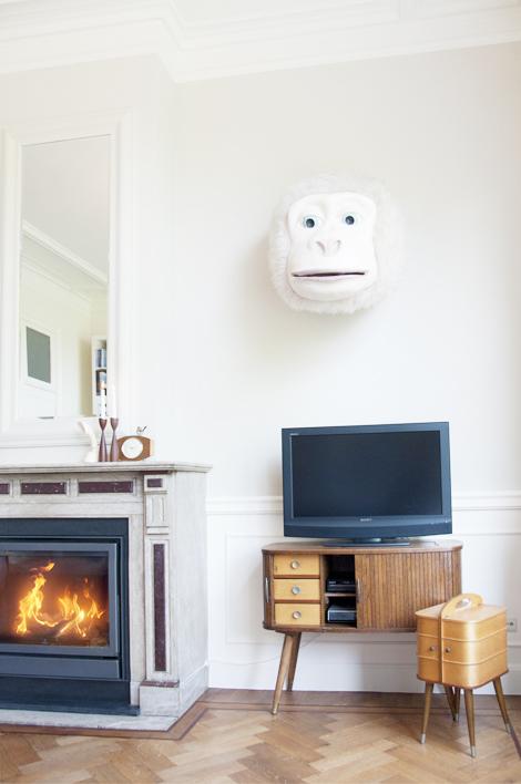 Una cabeza de mono en el salón