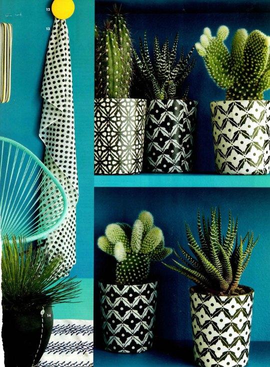 cactus-decoracion-1