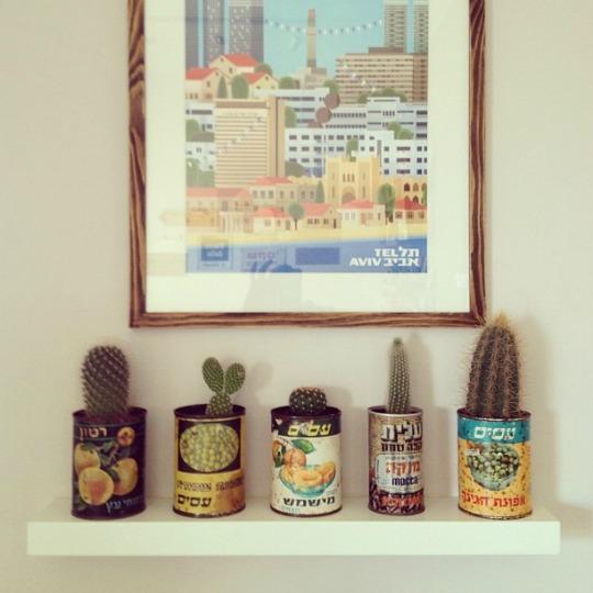 cactus-decoracion-3