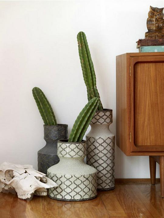 cactus-decoracion-5