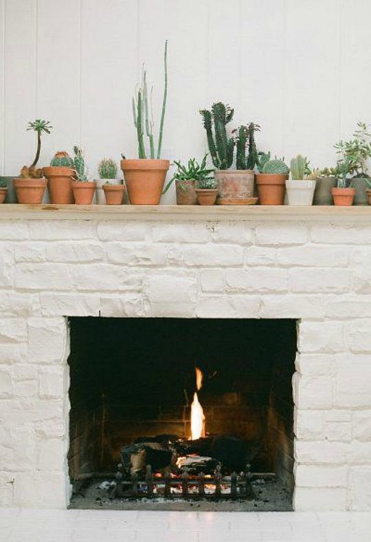 cactus-decoracion-6
