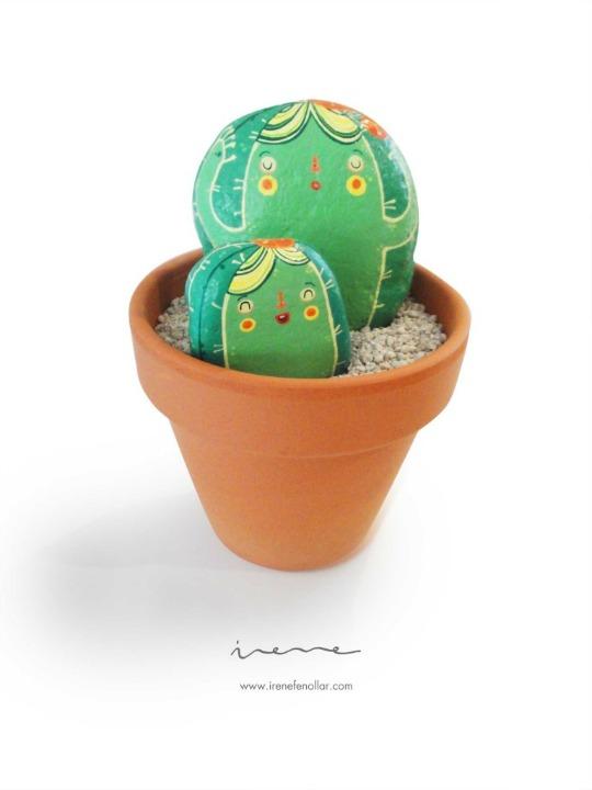 cactus-piedras-3