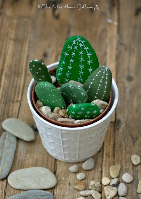 cactus-piedras-5