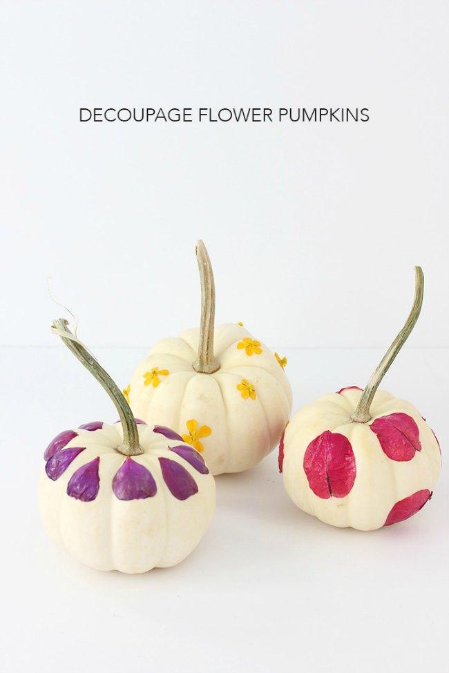 Cómo decorar calabazas para Halloween (34 Ideas)