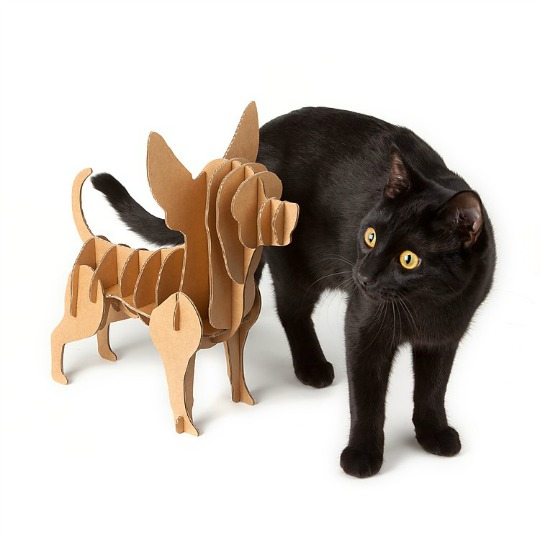 chihuahua-carton-1