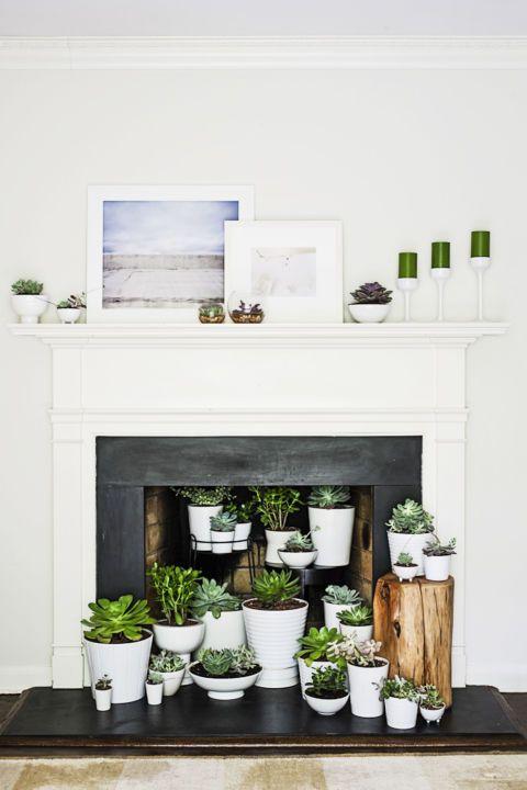 Decoración chimeneas en verano con plantas