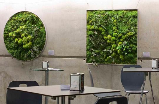 jardin-vertical-4