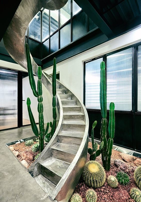 Hueco escaleras con plantas