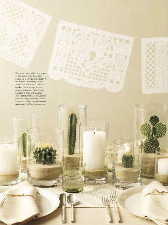 Cactus en jarrones de cristal